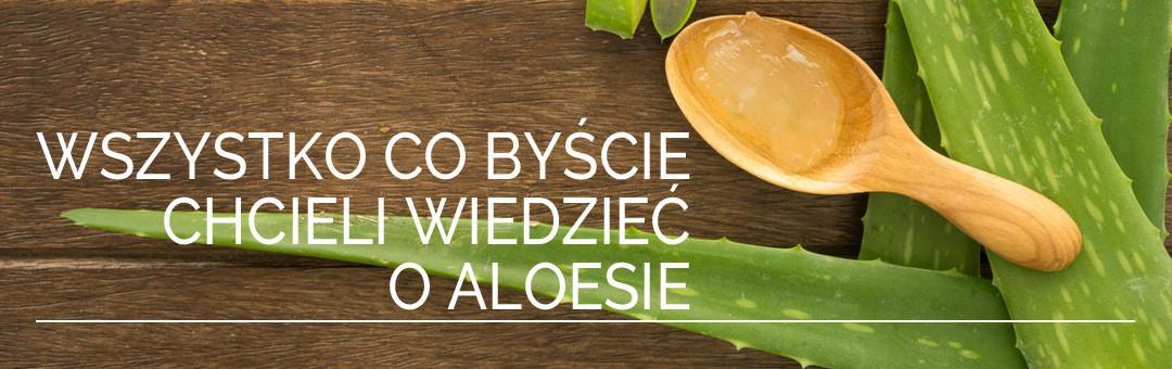 Wszystko co byście chcieli wiedzieć o aloesie