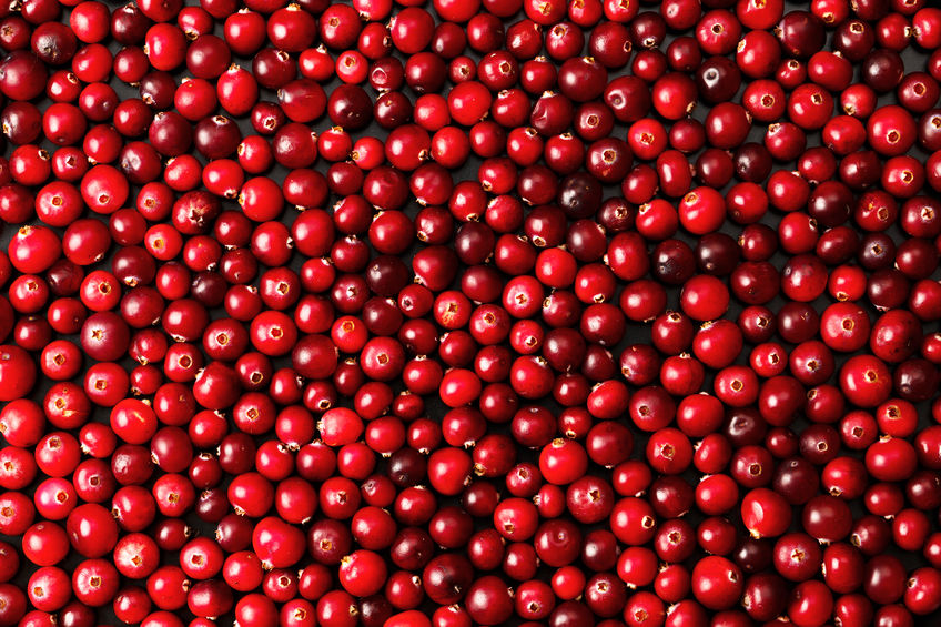 33698711 - ripe cranberries for background